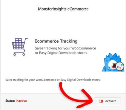 activate MonsterInsights eCommerce addon