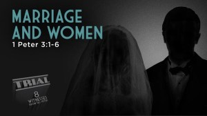 Pastor Mark Driscoll –  The Role of Women in Marriage