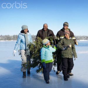 Question Of the Day: Is There A Solid Biblical Position About Christmas Trees?