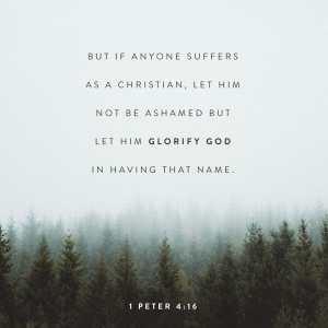 1 PETER 4:16 AMP