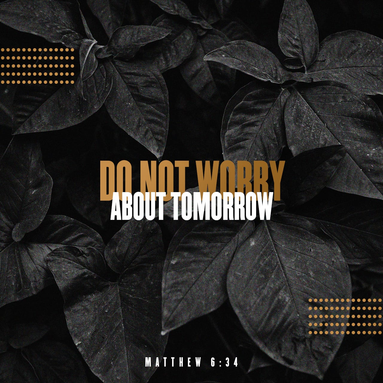Matthew 6:34 ESV
