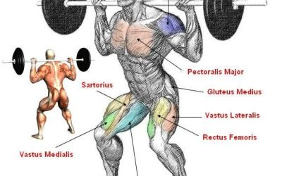 Squats: The Best Exercise For Overall Strength