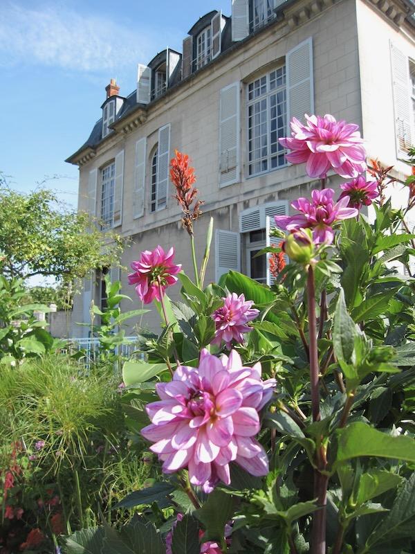 Dahlias at Chateau De Malmaison