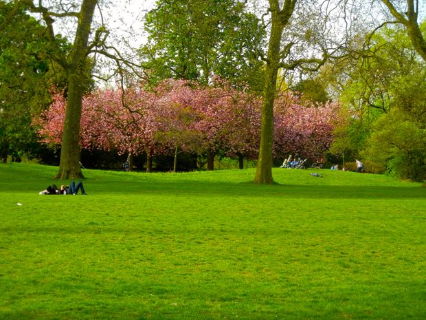 Springtime Hyde Park, London UK