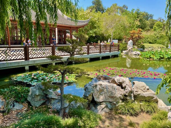 The Chinese Garden at Huntington Library