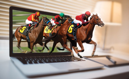 Best Horse Betting Sites - How to Bet On Horse Races