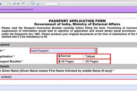 Free Forms 2018 Passport Application Form Online Free Forms