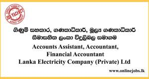 Accounts Assistant, Accountant, Financial Accountant - Lanka Electricity Company (Private) Ltd