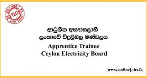 Apprentice Trainee - Ceylon Electricity Board