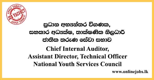 Chief Internal Auditor, Assistant Director, Technical Officer National Youth Services Council