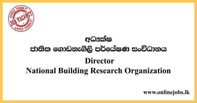 Director - National Building Research Organization