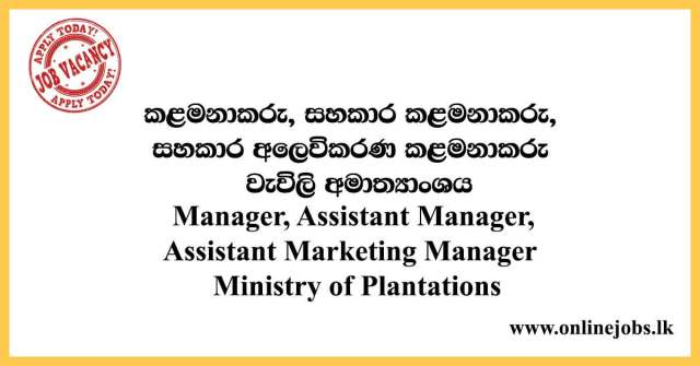Manager, Assistant Manager, Assistant Marketing Manager - Ministry of Plantations Vacancies 2021