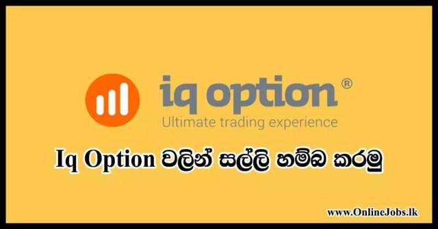 Iq option money make