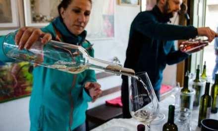 MODRA WINE CELLARS DAY : SLOVAKIA