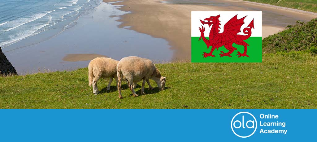 Four (or possibly five) words of Welsh origin
