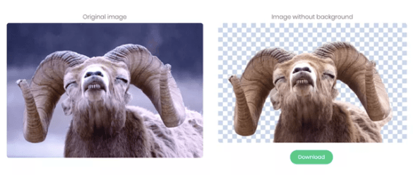 Image: Remove Images Background