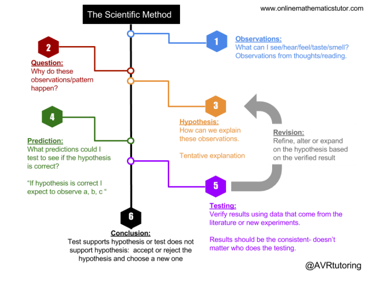 Scientific Method Infographic