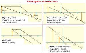 Convex Lenses and Ray Diagrams (examples, solutions