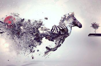 5 Best Graphics Design Apps