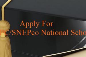2018 NNPC/SNEPco national scholarship