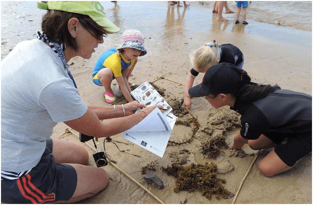 Kids at NZ beaches