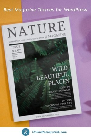 Best Magazine themes for your wordpress site - Pinterest Image