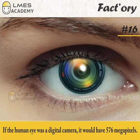 #16 If the human eye was a digital camera, it would have 576 megapixels