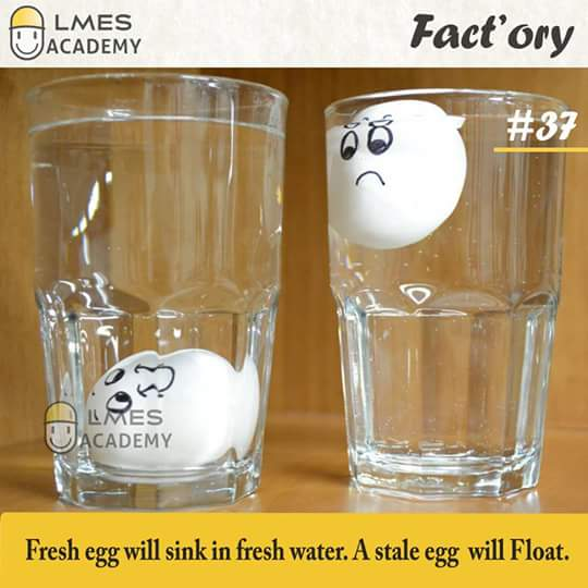 #37 Fresh egg will sink in fresh water. A stale egg will float.