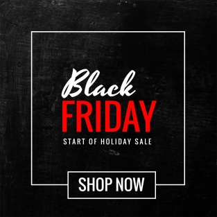 Black Friday Sale WordPress Deals