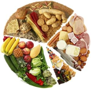 Rolul alimentelor – metabolismul