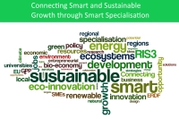 ris3 and sustainable growth