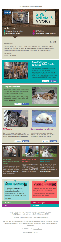 Give-animals-a-voice_non profit email marketing