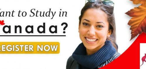 Cheap Universities in Canada; Why You Should Choose The University of Saskatchewan