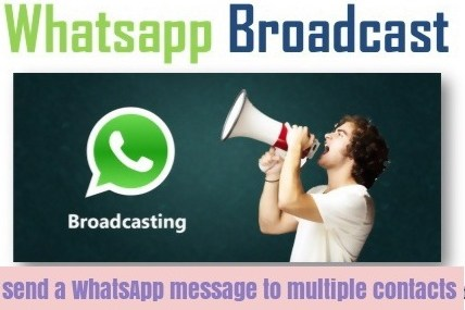 How to Use broadcast Whatsapp to send Message to Multiple Contacts at Once