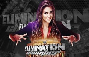 EliminationChamberPPV2014