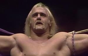 Hogan old