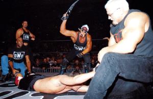 Hogan whip
