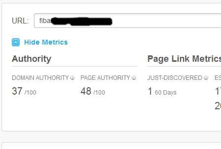 niche-blogging-domain-and-page-authority