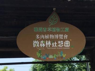 [苗栗]雅聞香草植物工坊,很好拍照的地方。