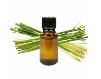 lemongrass, essential oil, calm, soothing, muscles, food, cooking