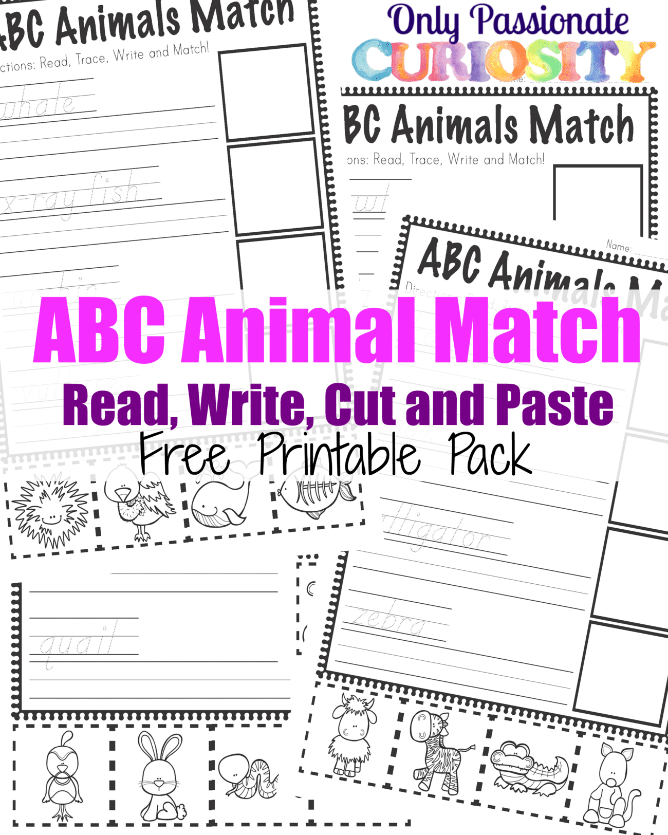 Abc Animals Read Write Cut And Paste Pack Abcs For Me