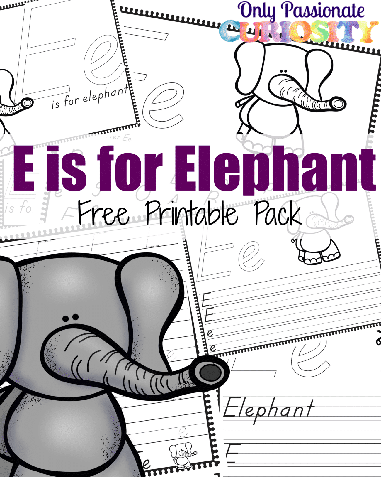 E Is For Elephant Abcs For Me Only Passionate Curiosity