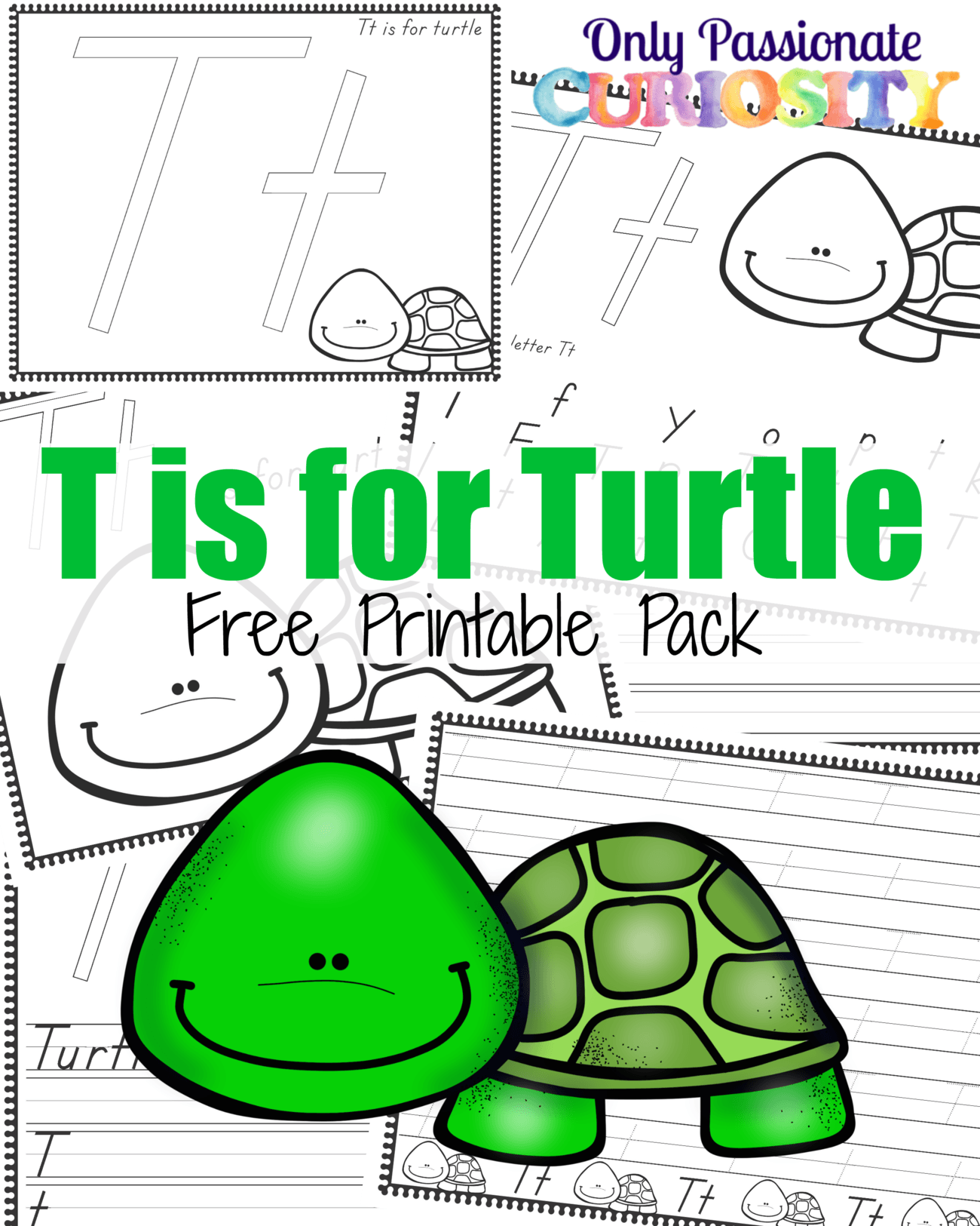T Is For Turtle Abcs For Me Only Passionate Curiosity