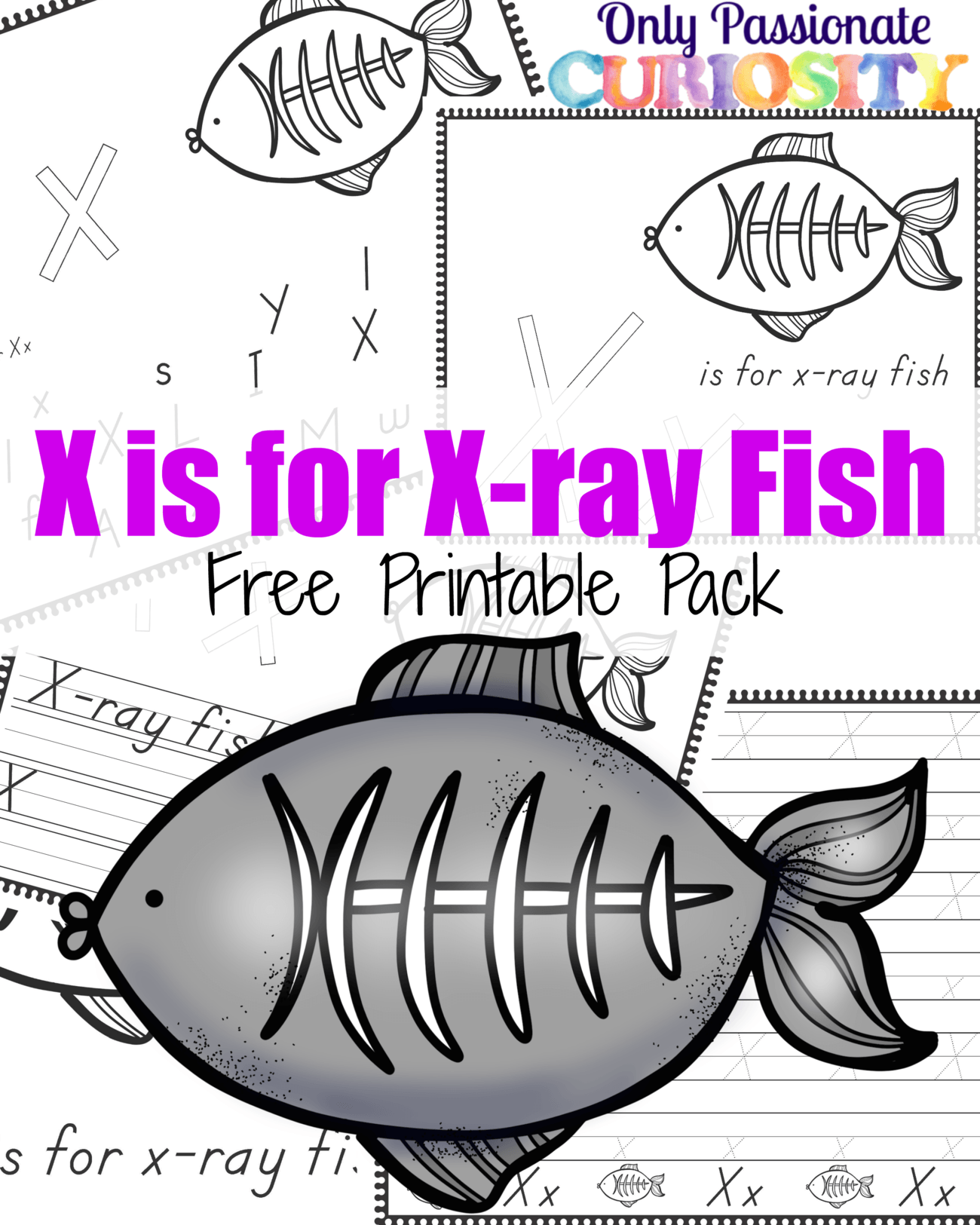 X Is For X Ray Fish Abcs For Me Only Passionate Curiosity