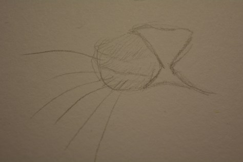 Drawing Whiskers with Pencil