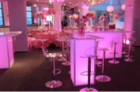 Pretty in Pink Party