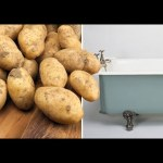Man Was On Ecstasy For 5 Day And Filled Hotel Bath With Potatoes