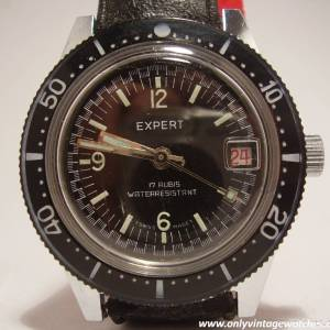Expert divers watch 15