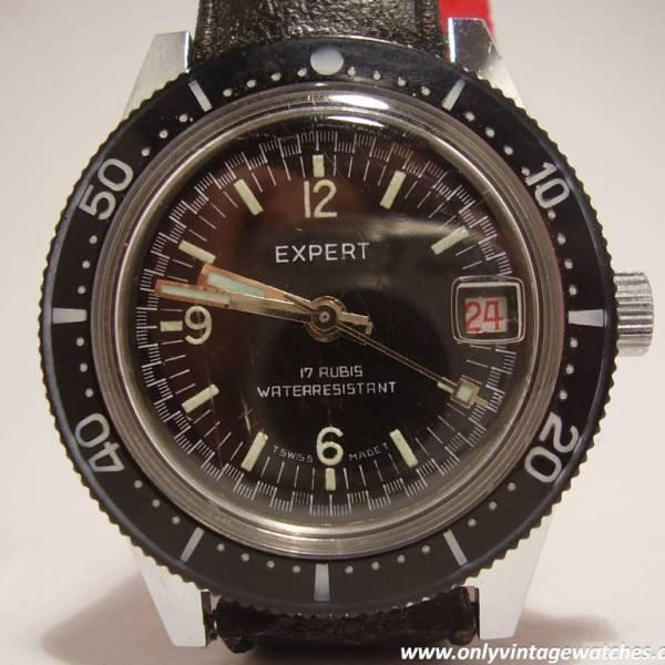 Expert divers watch 15