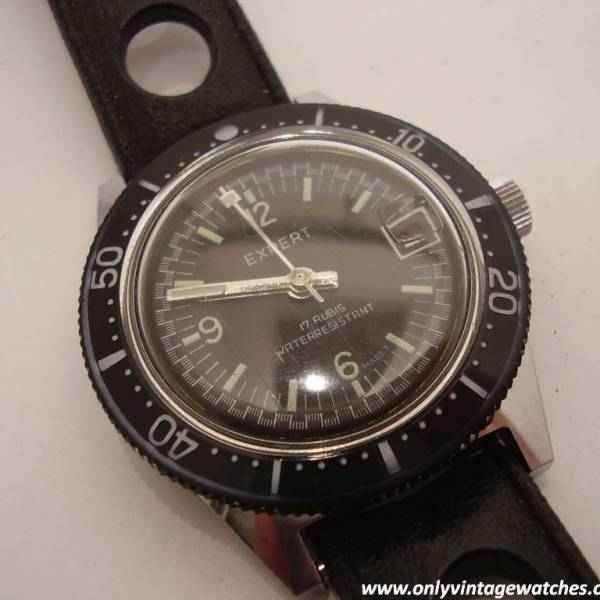 Expert divers watch 14